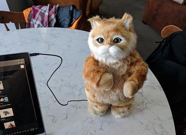 Колонки «Танцующий кот»