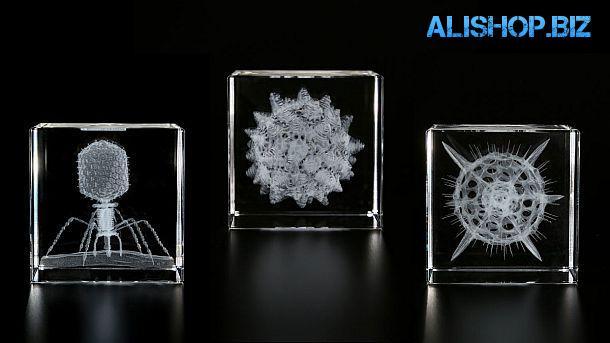 Хрустальные кубы с 3D лазерным изображением микроорганизмов Sola Cube Micro